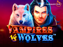 Vampires_vs_Wolves_Picture